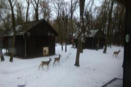 A téli tábor